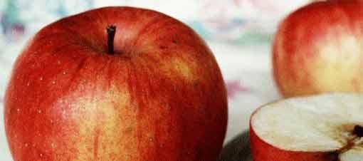 Günde Bir Elma Ye Hastalıklardan Korun